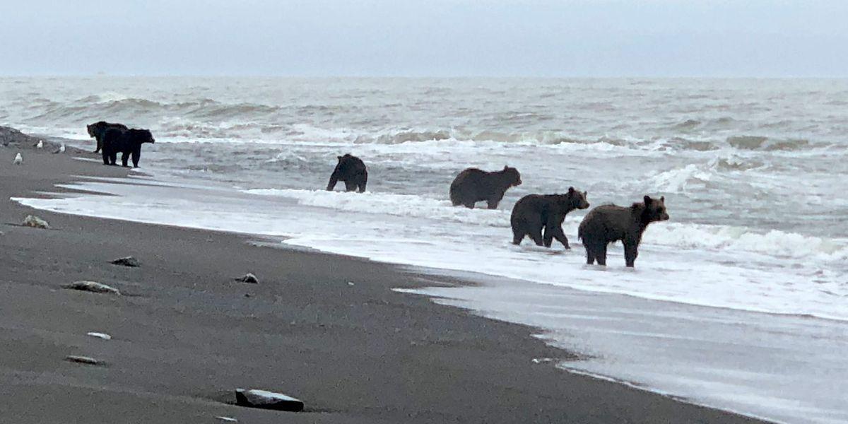 Gefängnisinsel Sachalin wird Russlands Testfeld für Wasserstoff