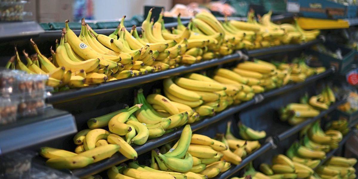 Supermarkt-Mitarbeiterin von Spinne in Bananenschachtel gebissen