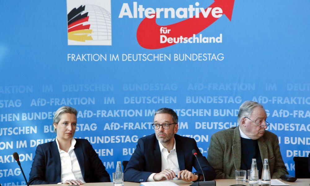 Welche Verbindungen es zwischen der deutschen AfD und Österreich gibt