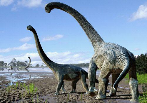 Größte dinosaurier aller zeiten der Größter Dinosaurier